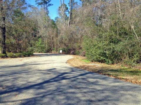 Magnolia Banks Lot 75